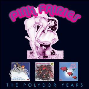 Pink Fairies - Polydor Collection - CD - MediaWorld.it