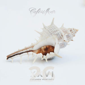 AA.VV. - Café del mar vol. 26 - CD - MediaWorld.it