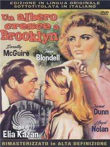 Un albero cresce a Brooklyn - DVD - MediaWorld.it