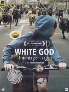 White God - DVD - MediaWorld.it