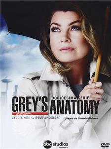Grey's anatomy - DVD - Stagione 12 - MediaWorld.it