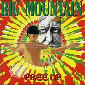 BIG MOUNTAIN - FREE UP - CD - MediaWorld.it