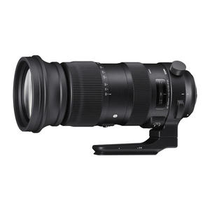 SIGMA 60-600MM F4.5/6.3(S)CANON - MediaWorld.it
