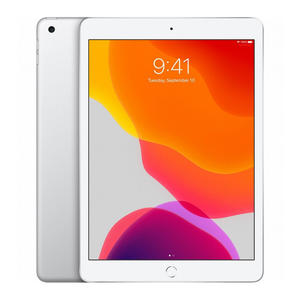 "APPLE iPad 10.2"" 2019 Wi-Fi + Cellular 128GB Argento - MediaWorld.it"
