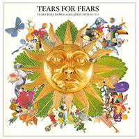 cd audio Tears For Fears - Tears Roll Down (Greatest Hits '82-'92) su Mediaworld.it