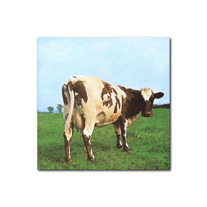 Pink Floyd - Atom Heart Mother (Remastered 2011) - thumb - MediaWorld.it