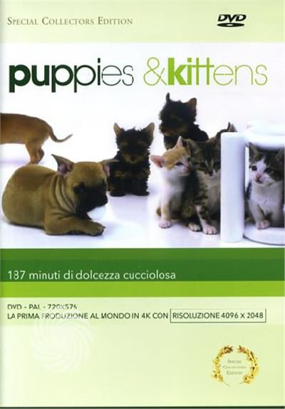 Puppies & kittens - DVD - thumb - MediaWorld.it