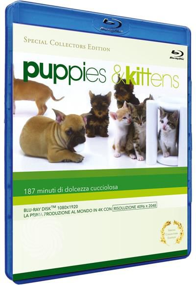 Puppies & kittens - Blu-Ray - thumb - MediaWorld.it
