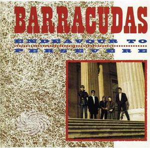 Barracudas - Endeavour To Persevere - CD - thumb - MediaWorld.it