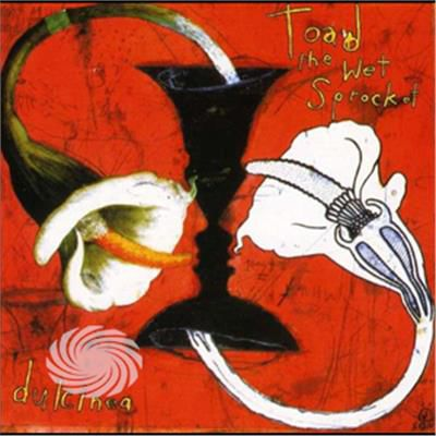 Toad The Wet Sprocket - Dulcinea Bonus Track - CD - thumb - MediaWorld.it