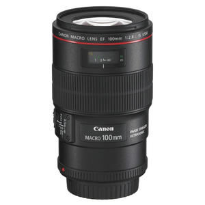 CANON EF 100MM F/2.8L - MediaWorld.it
