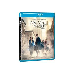 Animali Fantastici e Dove Trovarli - Blu-ray - MediaWorld.it