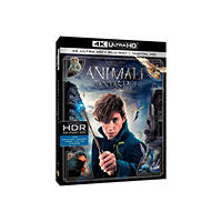 Blu-Ray - Fantascienza Animali Fantastici e Dove Trovarli (4K Ultra HD) - Blu-Ray su Mediaworld.it