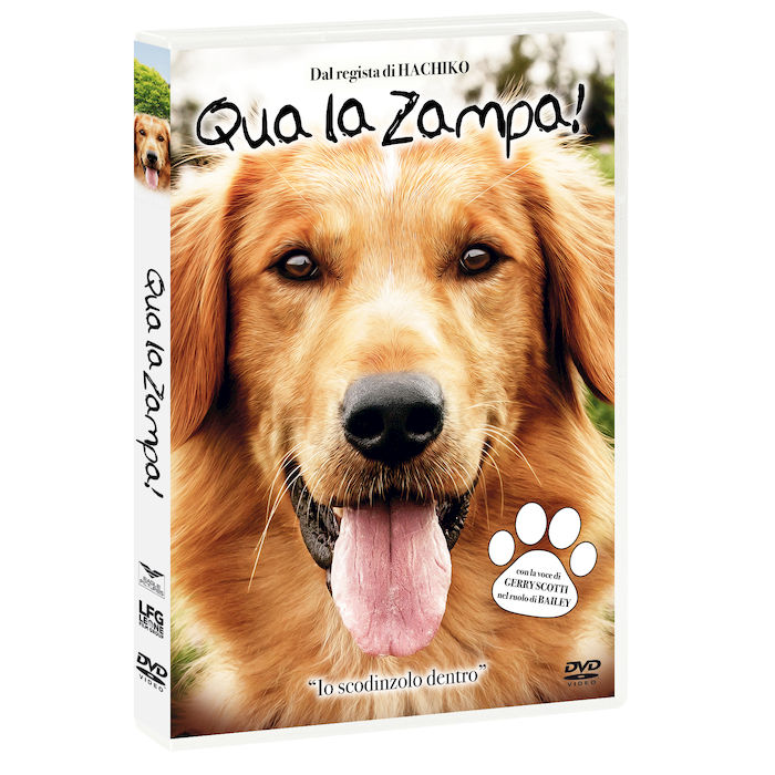 Qua La Zampa! - DVD - thumb - MediaWorld.it