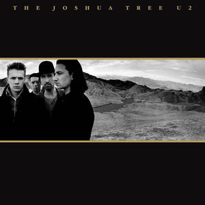 U2 - The Joshua Tree (30th Anniversary) - Vinile - thumb - MediaWorld.it