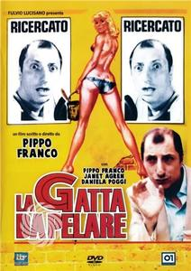 La gatta da pelare - DVD - thumb - MediaWorld.it