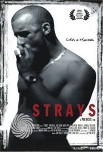 STRAYS - DVD - thumb - MediaWorld.it