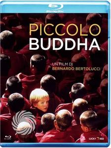 Piccolo Buddha - Blu-Ray - thumb - MediaWorld.it