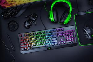 RAZER BLACKWIDOW (GREEN SWITCH) - MediaWorld.it
