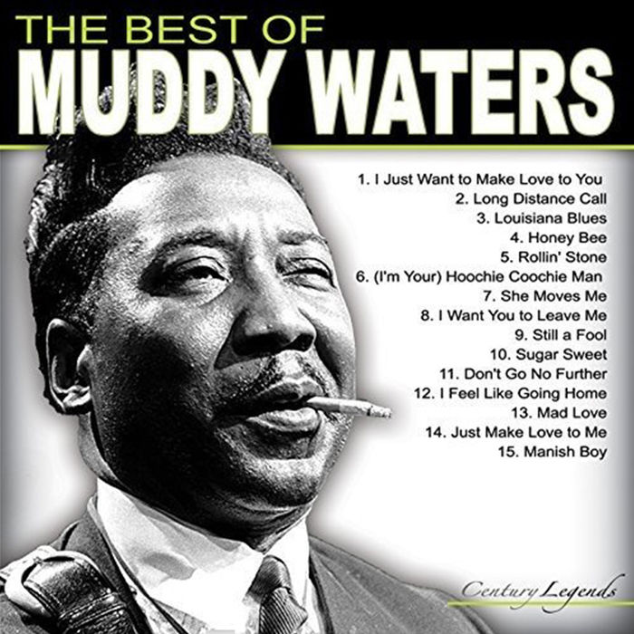 Muddy Waters - The best of - Vinile - thumb - MediaWorld.it
