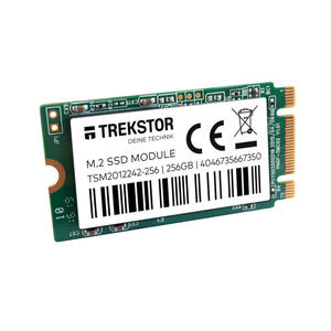 TREKSTOR Internal SSD Modul  M.2  42 mm - 256 GB - MediaWorld.it