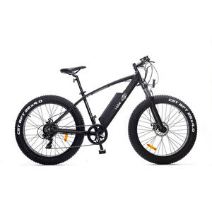 I-BIKE MTB SNOW ITA99 - MediaWorld.it